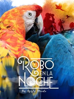 Web.COVER_ROBO_NOCHE