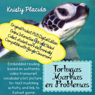 TPT Tortugas Marinas en Problemas google SQUARE